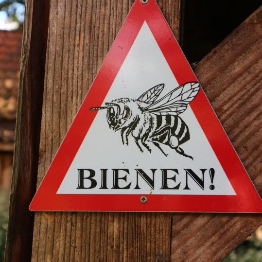 Wildbienennisthilfenbau der Bienenbotschafter Holm-Seppensen